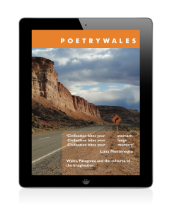 Poetry-Wales-blog-image